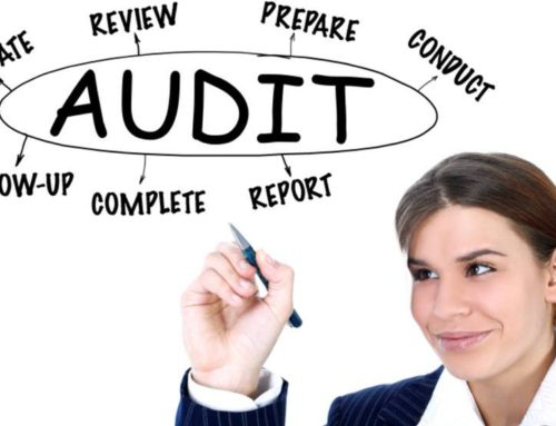 Primary Purpose and Objectives of Auditing