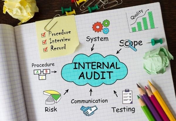 performing an internal audit