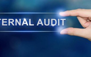 internal audit scope of work