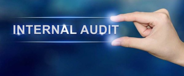 internal audit scope of work